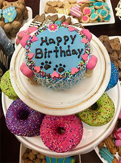 Woof Gang Bakery & Grooming Las Vegas Birthday Cake & Doughnut Treats