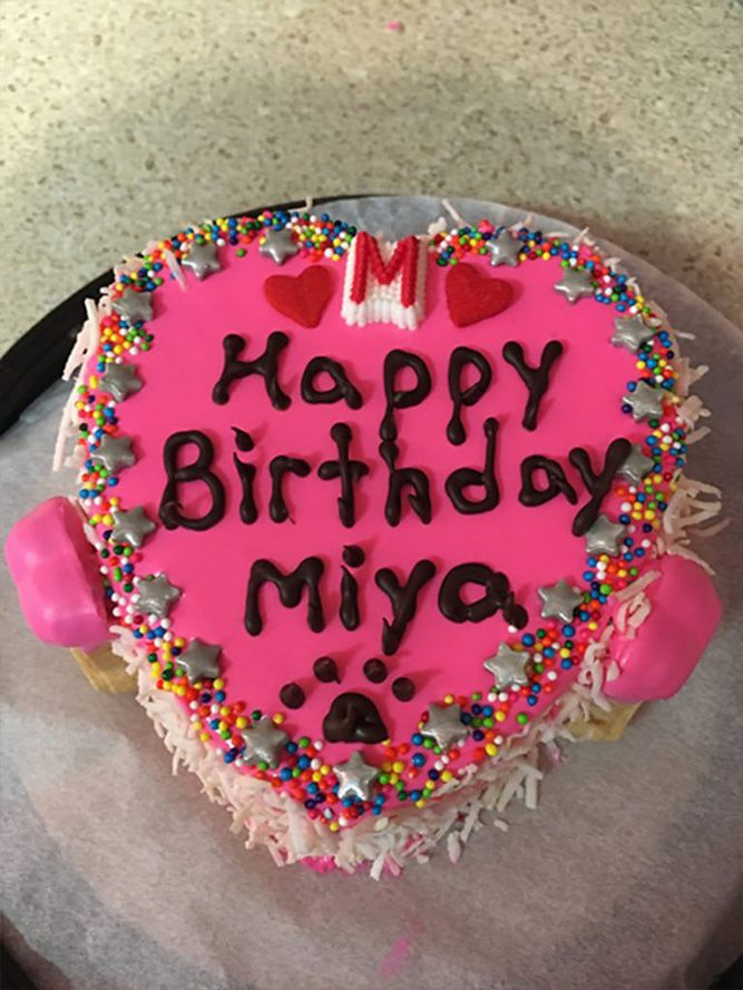 Woof Gang Bakery Las Vegas happy birthday mia. Pink birthday cake with red hearts and colorful sprinkles
